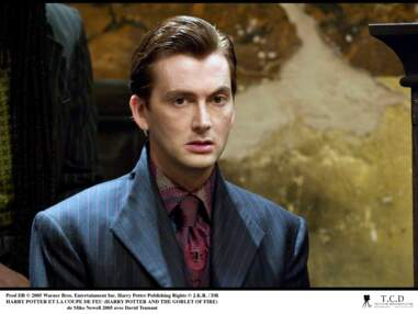 David Tennant (Staged, Docteur Who) : la star aux mille visages