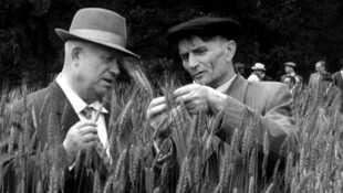 Le savant, l'imposteur et Staline : nourrir le peuple