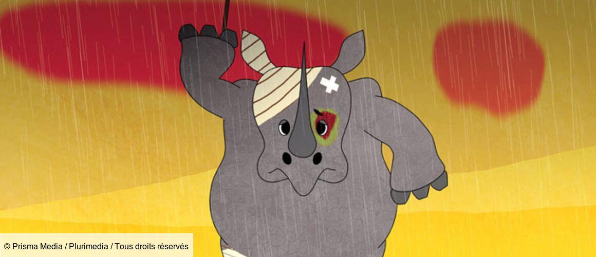 Un Elephant C Est Vraiment Gros S1e1 Un Drole D Animal Tele Loisirs