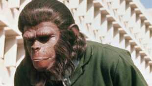 la conquête de la planète des singes streaming