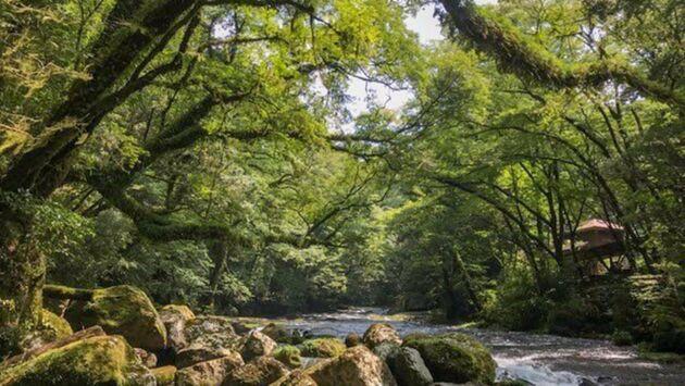 Les parcs naturels... en Minuscule