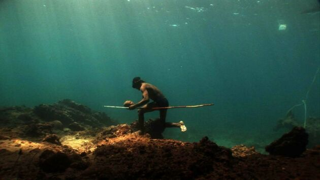 Les Moken, une vie aquatique