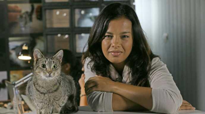 Chats des villes et chats des champs  Tous les sens en alerte episode 1 ,  Documentaire , Télé,Loisirs