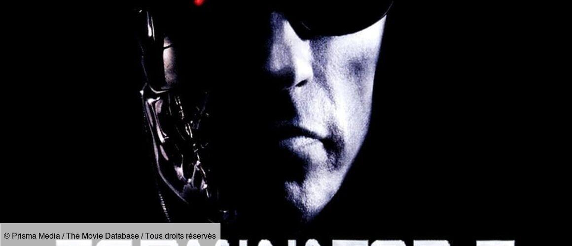 Terminator 3 Stream