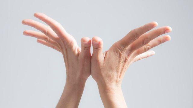 L'oeil et la main