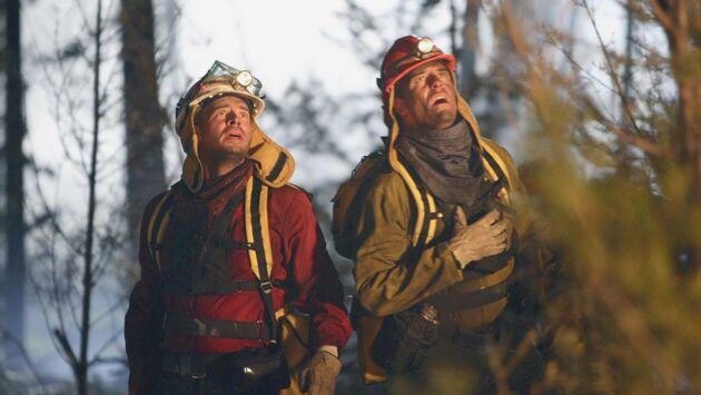 La forêt en feu