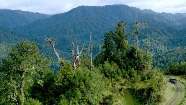 Nouvelle-Zélande, terre sauvage