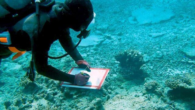 A qui appartiennent les océans ?