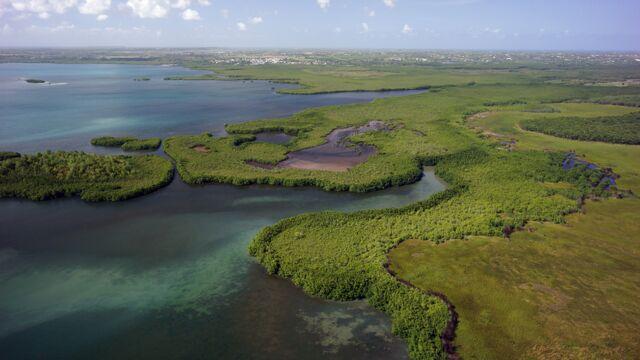 Les Antilles - Guyane : les baromètres du climat