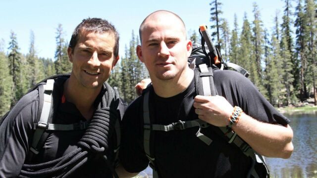 bear grylls   vip vs  wild