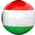 Equipe de Hongrie de football