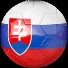 Équipe de Slovaquie de football