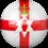Equipe d'Irlande du Nord de football