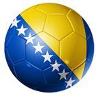 Equipe de Bosnie de football