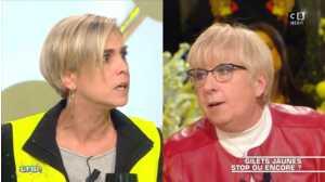 Les terriens du samedi : le ton monte entre une gilet jaune et une députée LREM