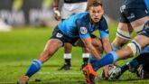Sport : Western Province - Blue Bulls