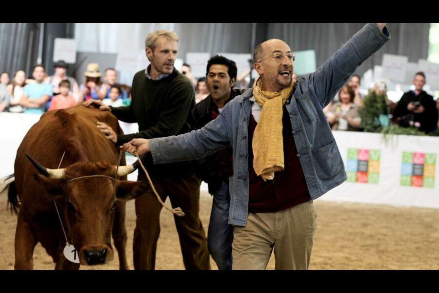 La vache de Mohamed Hamidi (2016), synopsis, casting, diffusions tv, photos, videos...- Télé-Loisirs