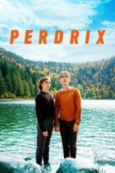 Cinéma : Perdrix