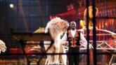 Culture Infos : 39e Festival international du cirque de Monte-Carlo