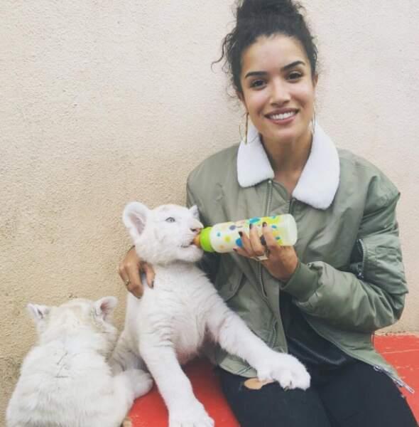 Un chaton un peu plus gros... Qui oserait donner le biberon à un tigre blanc ?