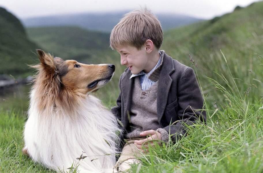 LASSIE (Version 2006) : Un héros canin mythique…