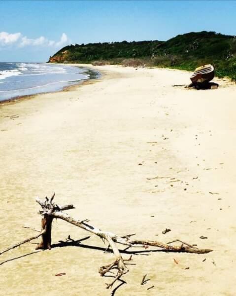 La chroniqueuse est actuellement en vacances au Brésil