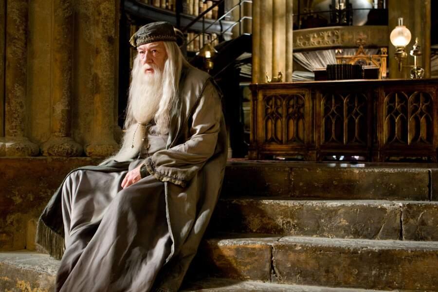 Michael Gambon a notamment été préféré à Ian Mckellen qui jouait Gandalf dans Le Seigneur des anneaux.