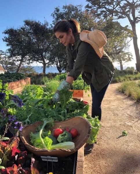 N'oubliez pas de manger au moins 5 fruits et légumes par jour.