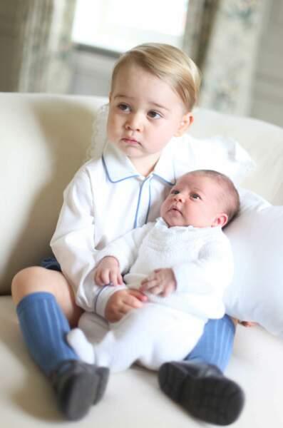 Ils ne sont pas trop mignons ces bébés ?