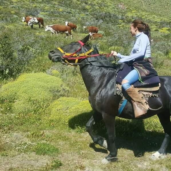 Balades à cheval...