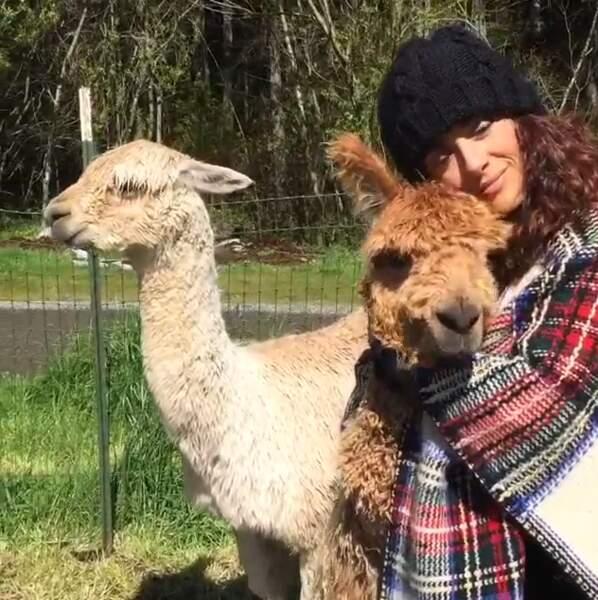 Et de faire un petit câlin aux mignons lamas