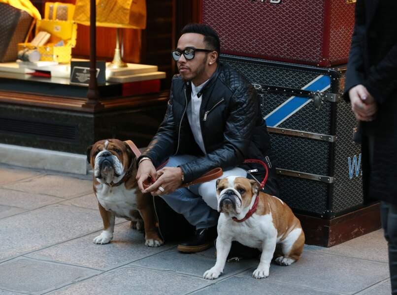Quand Lewis Hamilton part faire du shopping, c'est toujours avec Roscoe et Coco…