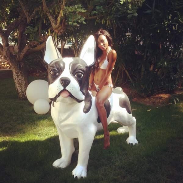 …ou aux gros chiens placides.