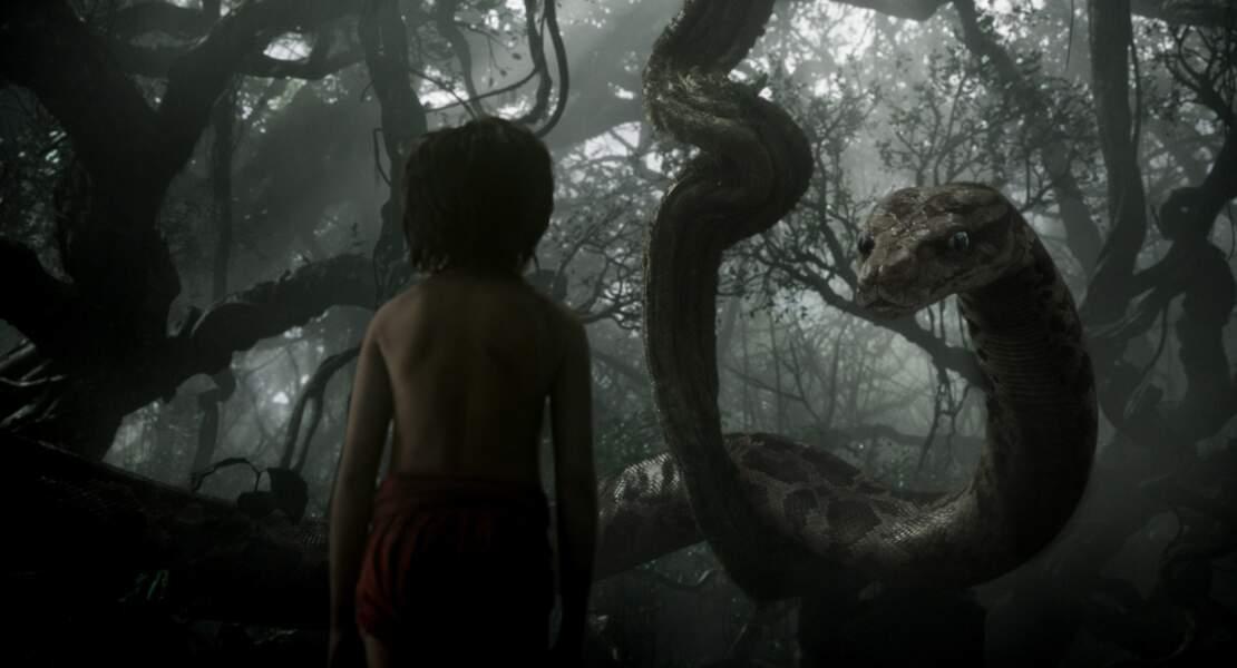Mowgli face à Kaa dans Le Livre de la jungle (13/04)