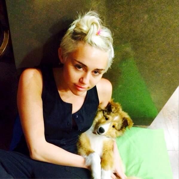 Il s'appelle Emu et Miley Cyrus ne le quitte plus.
