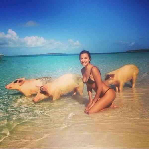 Seulement s'il y a des cochons.