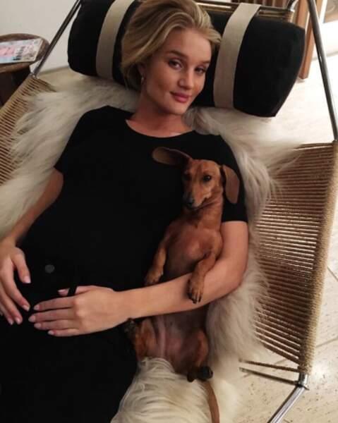 En attendant bébé, Rosie Huntington-Whiteley se repose en bonne compagnie.