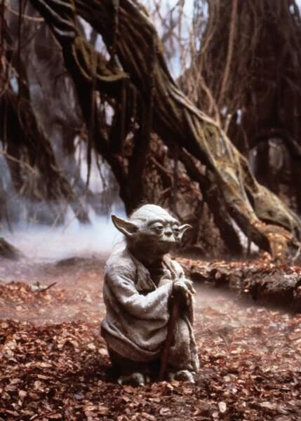 Yoda dans L'Empire contre-attaque, le meilleur film de la saga (à ce jour)