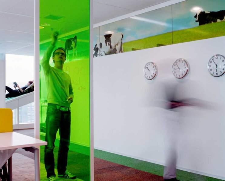 Aux Pays-Bas, on ne note pas ses idées sur un papier mais sur un tableau transparent vert