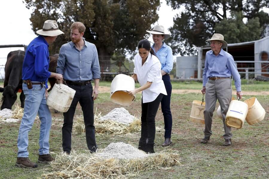 Meghan Markle et le Prince Harry s'initient aux techniques agricoles