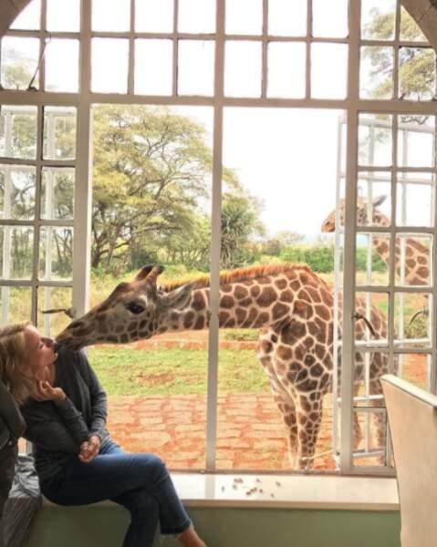 French kiss avec une girafe ?