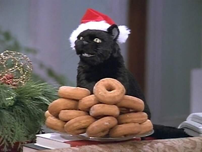 Salem, le chat de Sabrina, l'apprentie sorcière