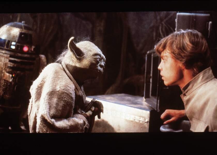 Yoda et le jeune padawan Luke Skywalker