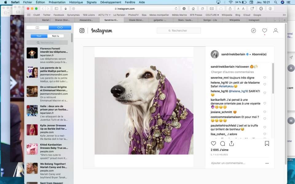 Sandrine Kiberlain a choisi un costume sensuel pour son chien