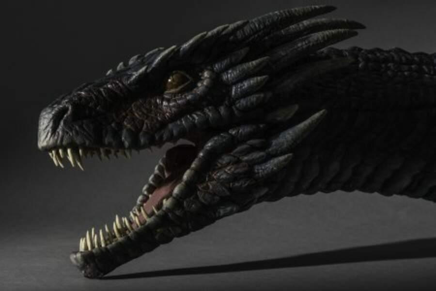 L'un des dragons de Khaleesi