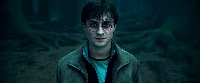 2010-2011. Harry Potter et les Reliques de la Mort