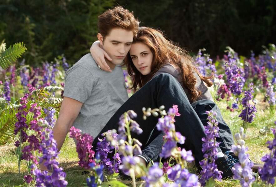 L'univers de ce nouveau Twilight est encore très fleur bleue
