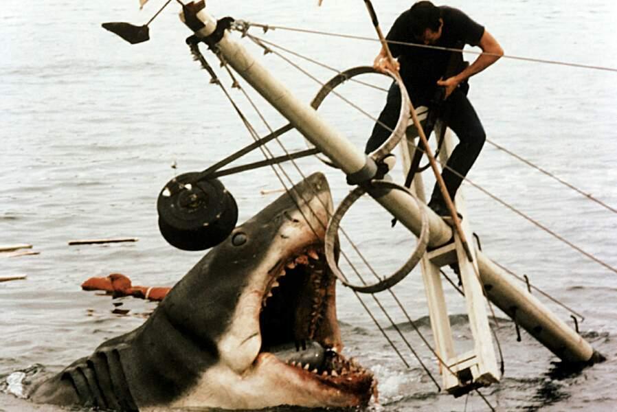 Le requin des Dents de la Mer : les vacanciers ne lui disent pas merci.