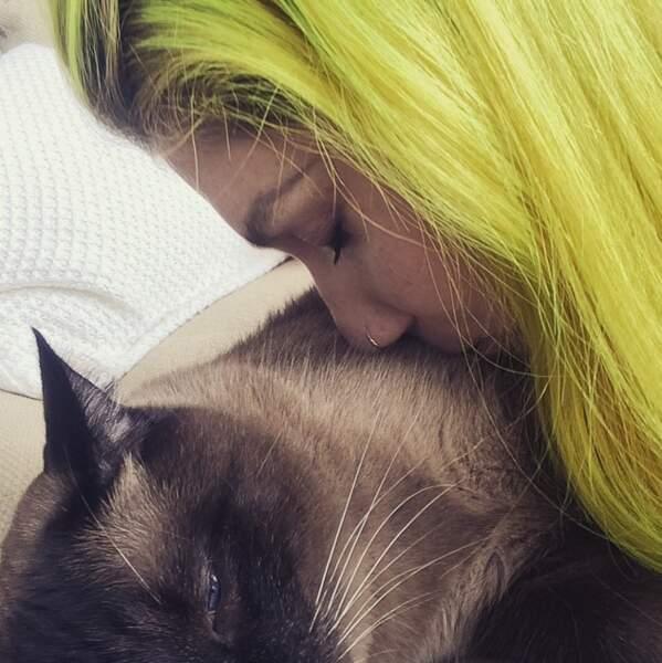 Ke$ha et son chat (rime riche)