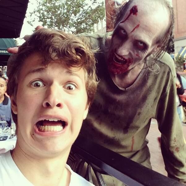 Du sang ? Attention, ça attire les zombies Ansel.